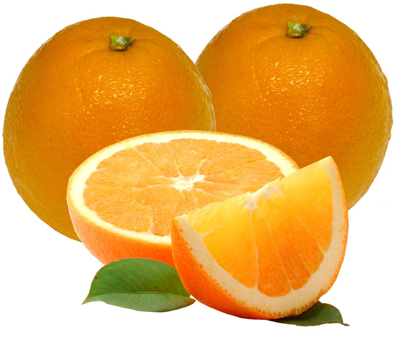 navel oranges america s most popular eating orange navel oranges are ...
